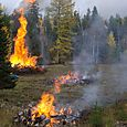 Burning Brush Piles